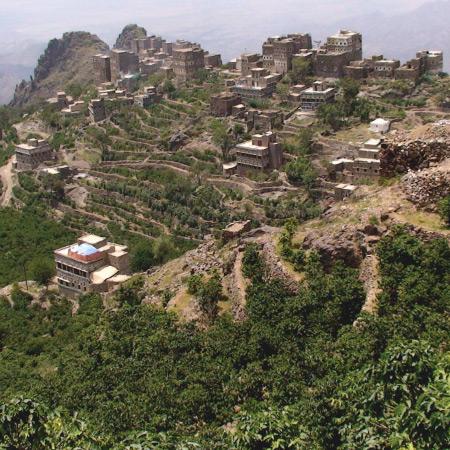 Káva Jemen